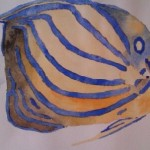 Angel fish watercolour